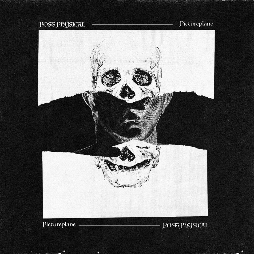postphysical_pictureplane
